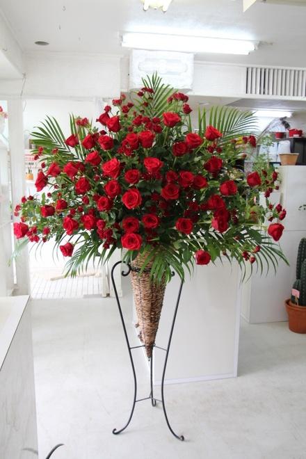 赤バラのみ